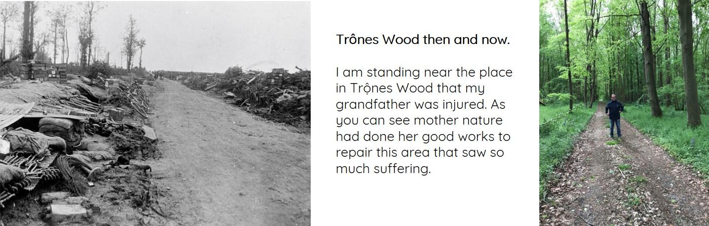 Trones Wood_2