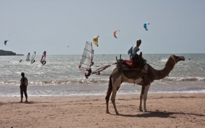 Camels, kite-surfers and wind-surfers on Essaouira beach